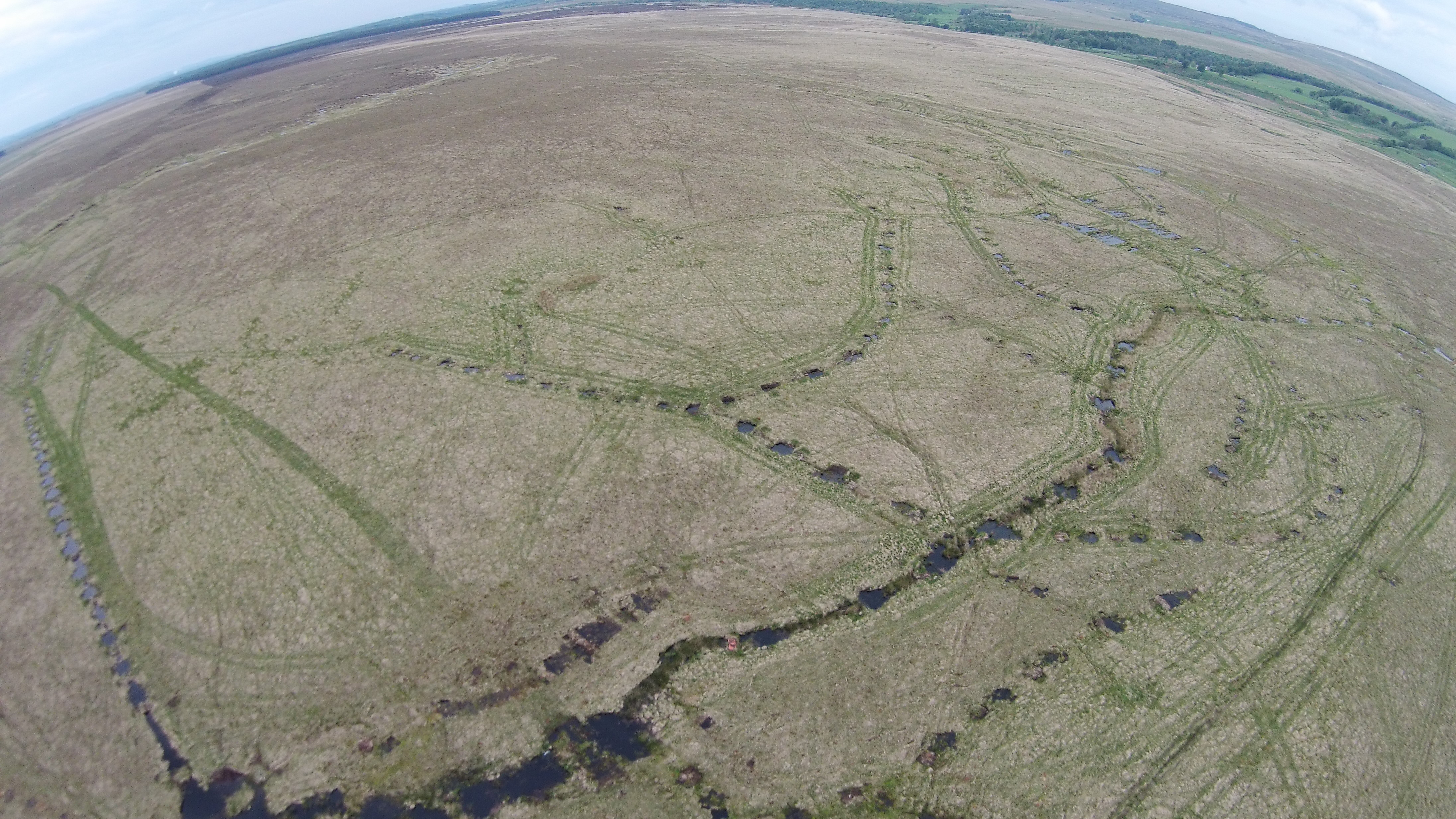 Aerial photograph showing drainage ditches across RSPB Airds Moss. These ditches were put in at the end of the 20th century to drain the site for farming which are still having an affect on the bog's hydrology to this day. The pools visible have been created from a series of peat dams that have been put in place to raise the water level and prevent the water running off site. Peat dams are put in place at roughly 20 meter intervals.