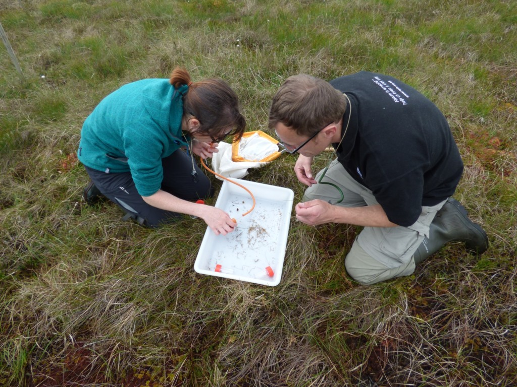 Using pooters to collect small invertebrates (c) CEI 2015